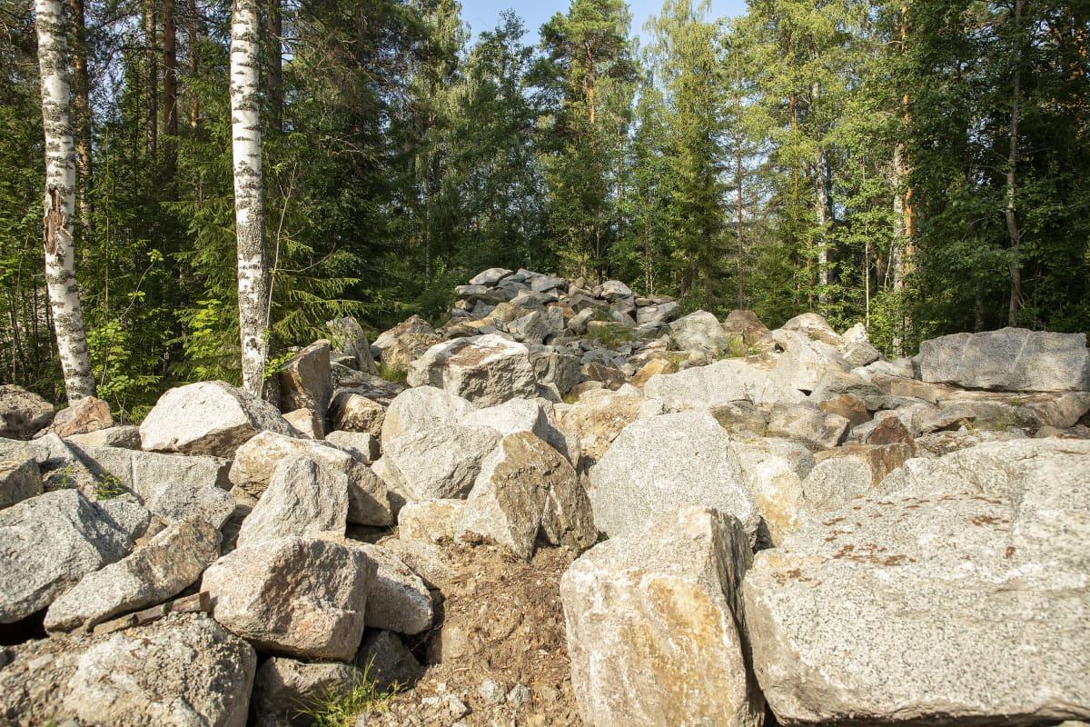 Kivikasa metsässä