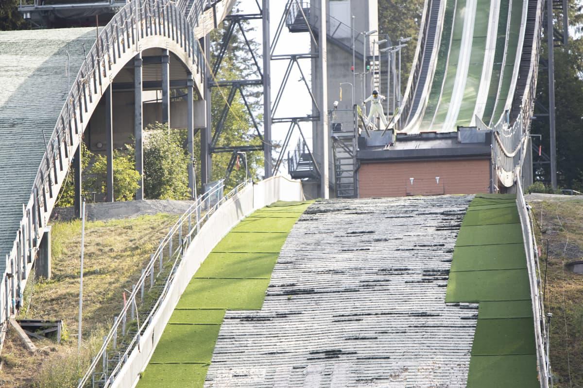 Mäkihyppääjä hyppää Puijon normaalimäestä kesällä 2021.