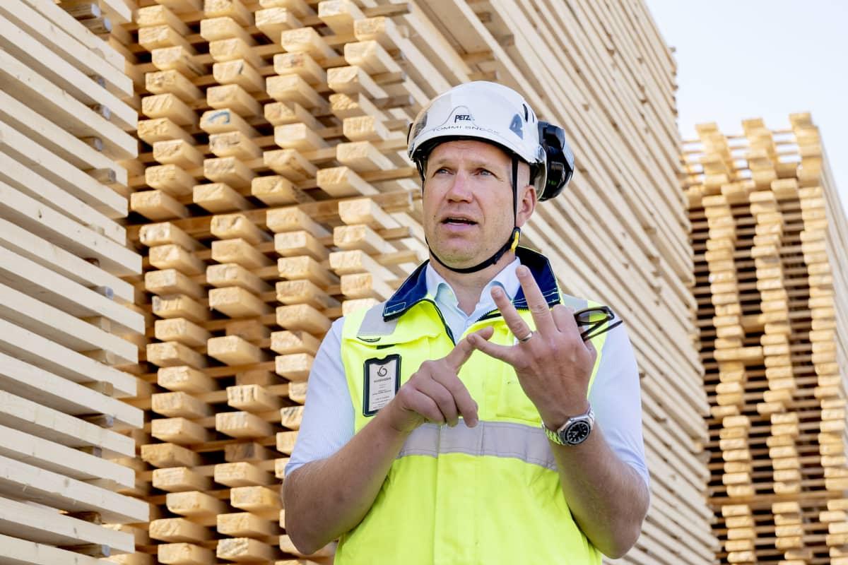 Tommi Sneck seisoo Koskisen sahalla puutavara pinonon edessä.