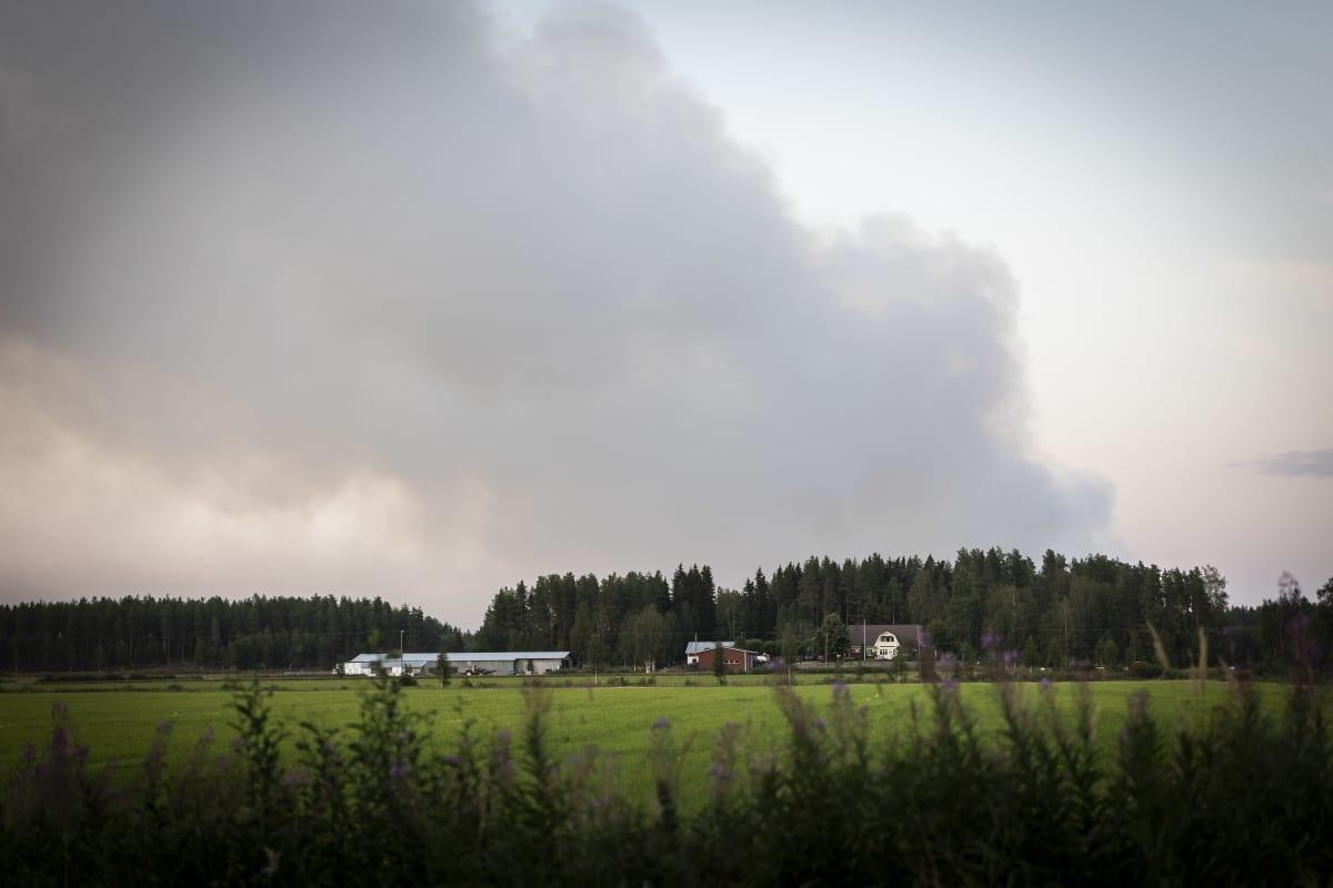 Maastopalo Kalajoella 28.7. eteni nopeasti ja lähestyi asutusta.