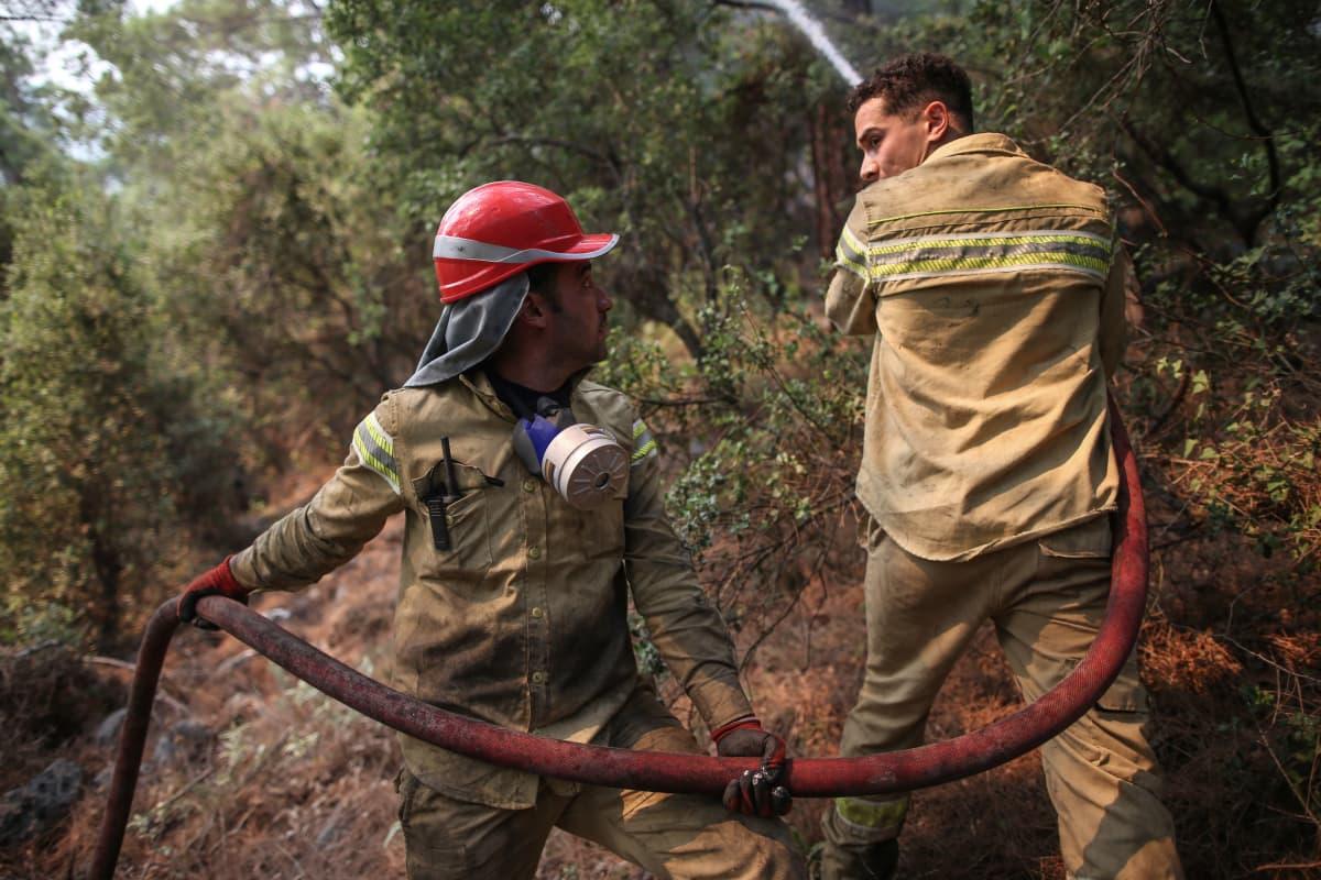 Palomiehet sammuttamassa Turkin metsäpaloja.