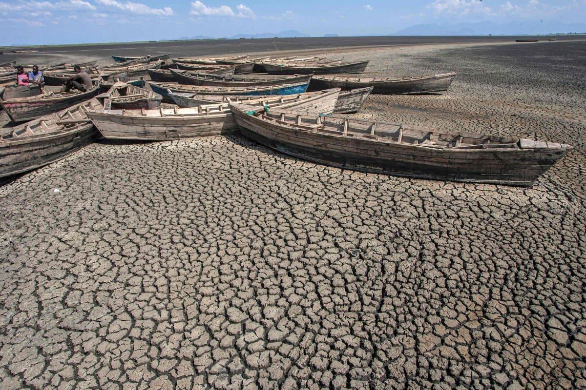 Veneitä täysin kuivuneella maalla.