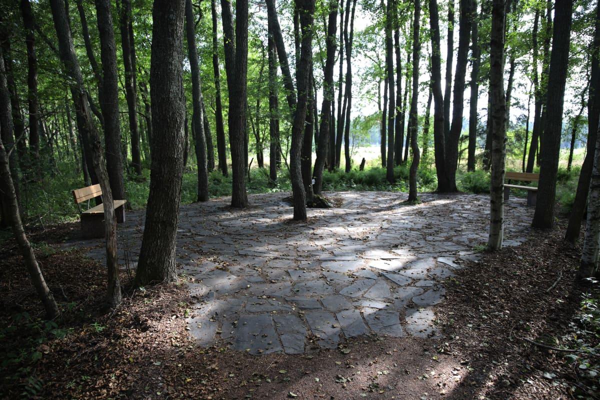 Keisarin huvipuiston alueen lähdealue Virolahden Tillissä.