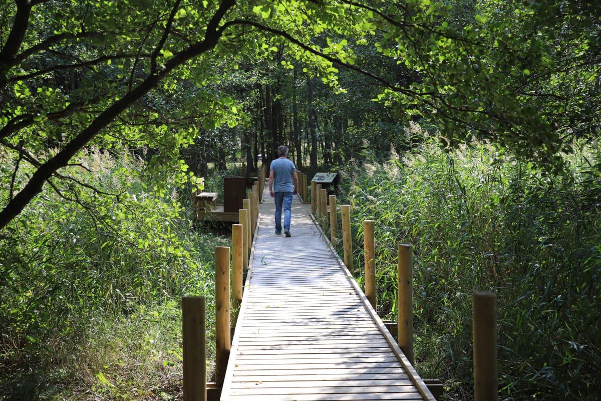 Keisarin huvipuiston alueelle rakennettu silta Virolahden Tillissä.