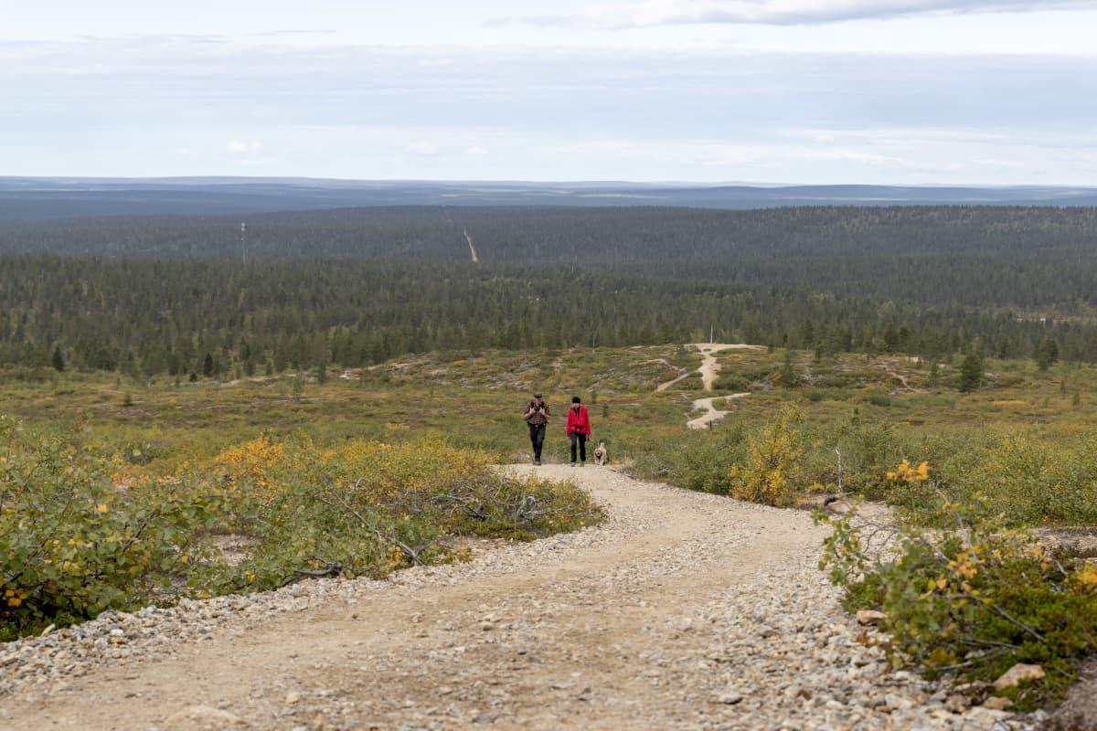 Urho Kekkosen kansallispuiston Kiiruna-polulla riitti kulkijaa elokuun lopussakin