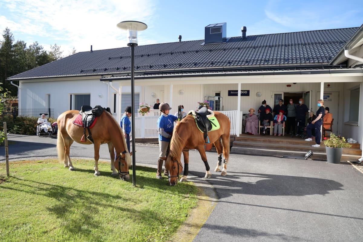 Kaksi hevosta hoitajineen esittäytyvät vanhuksille hoivakpodin pihalla.