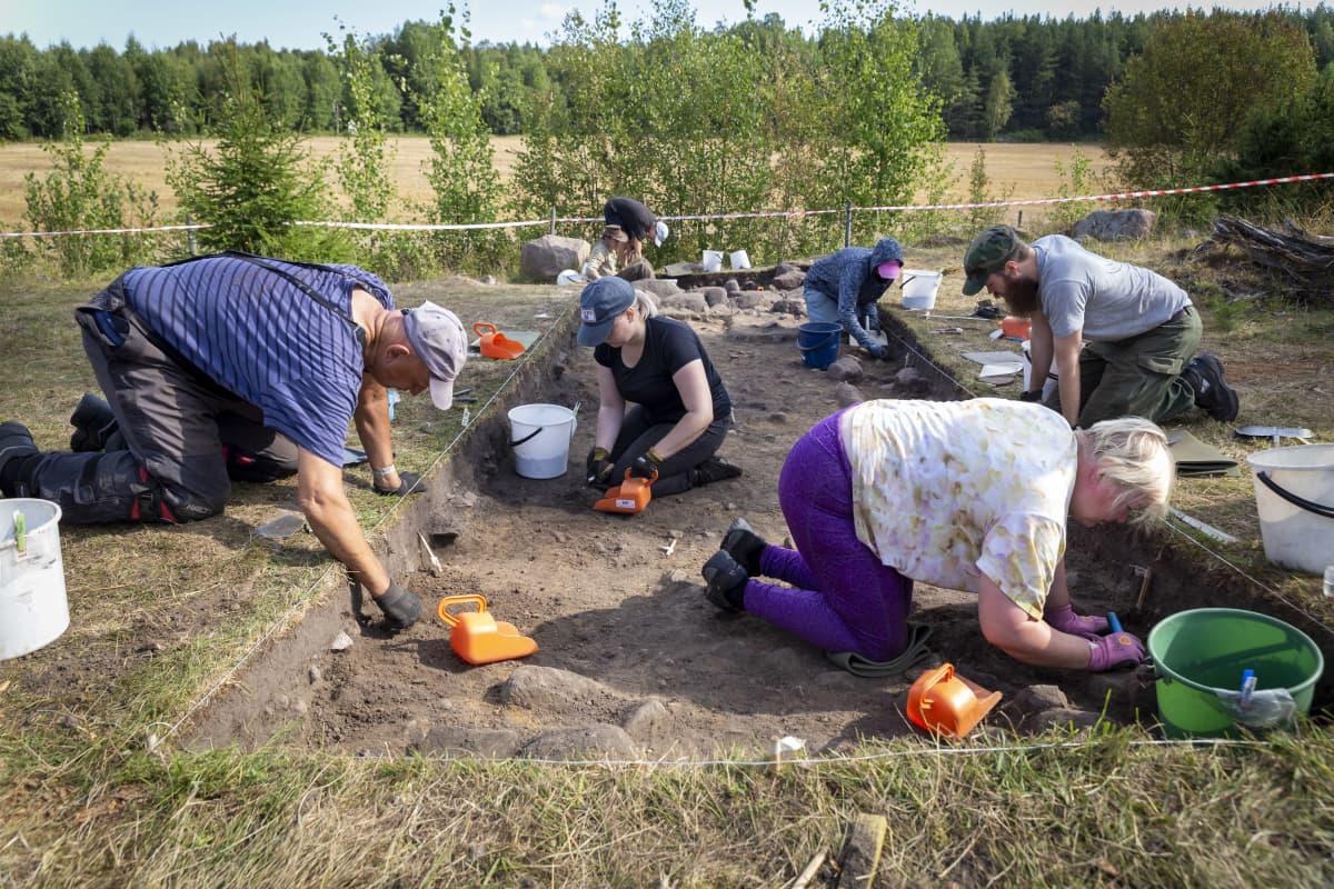 Opiskelijat kaivavat maata arkeologisella kaivauksella.
