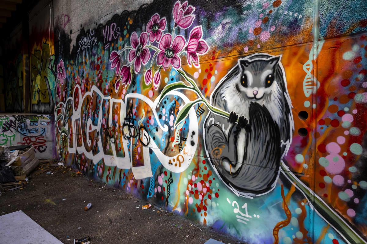 Graffiti seinässä