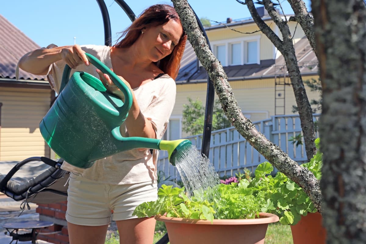 Melina Holmberg kastelee kukkia.