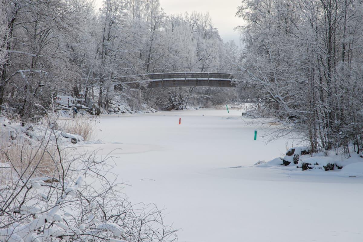 Jäässä oleva Virojoki ja Virojoen kevyenliikenteen silta talvella.