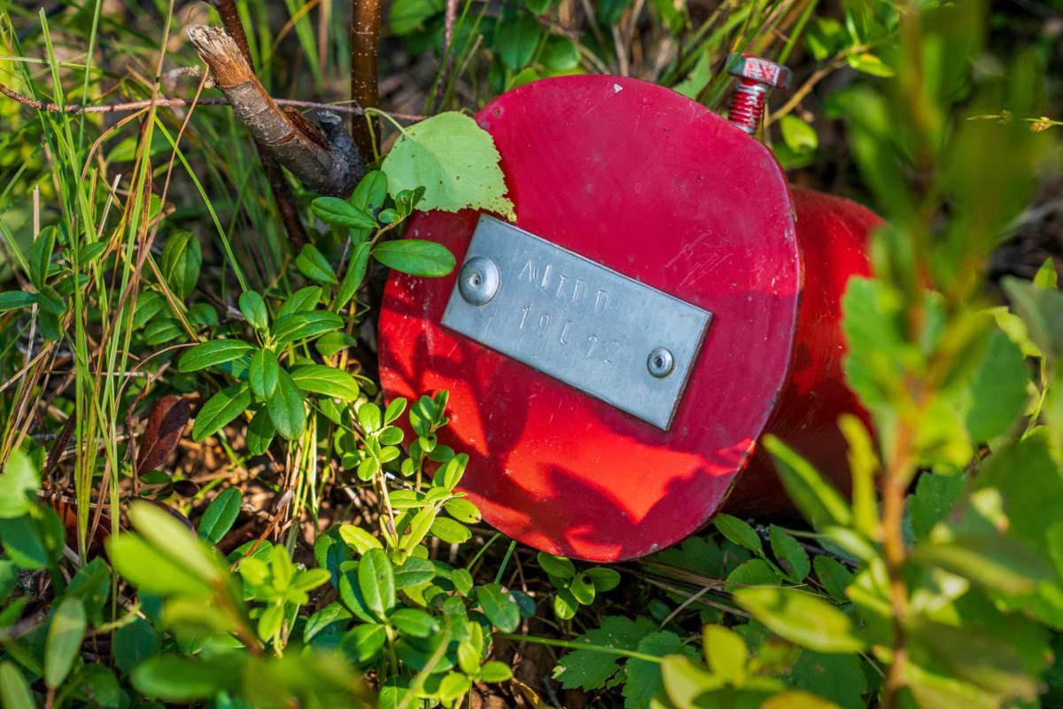 Metsässä pilkistää kaivoksen näyteporausreiän punainen kansi.