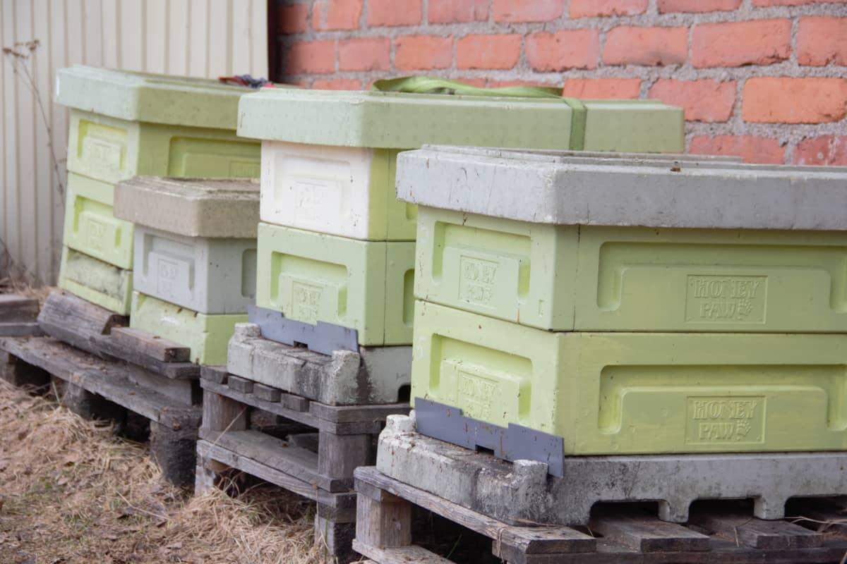 Mehiläispesiä rakennuksen seinustalla