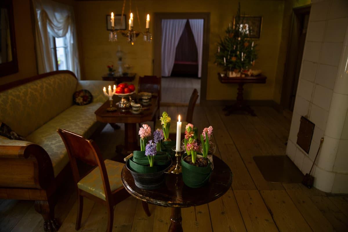 Ruiskumestarin talon sali, etualalla pöydällä erivärisiä hyasintteja.
