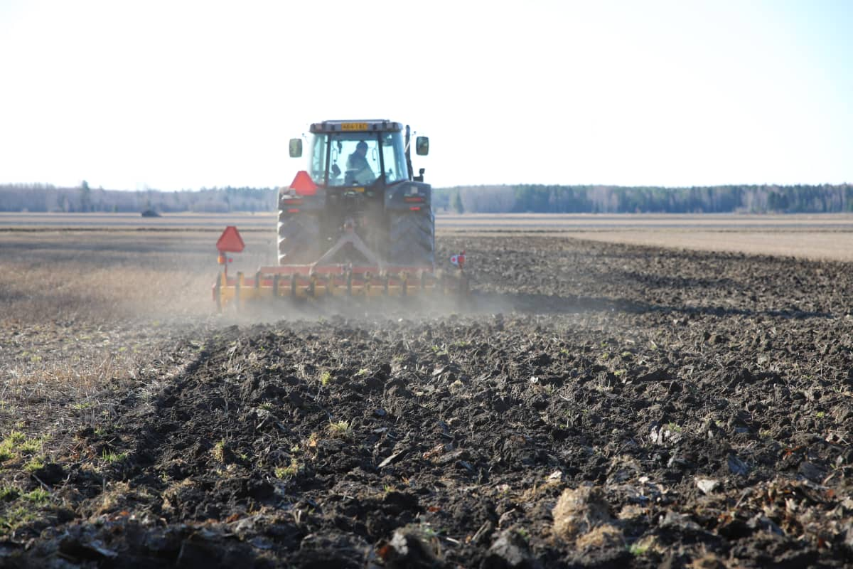 Traktori muokkaa peltoa.