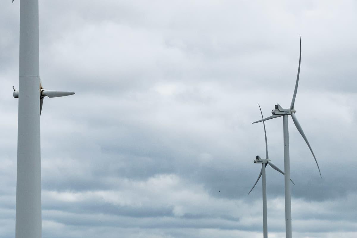 Reposaaren tuulipuiston tuulivoimaloita.