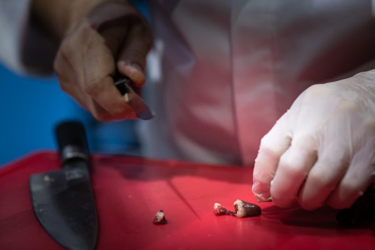 Kilpailussa valmistettiin ennalta määrätyistä pääraaka-aineista kaksi kilpailuruokaa. Pakolliset raaka-aineet olivat tänä vuonna monni ja viiriäinen.