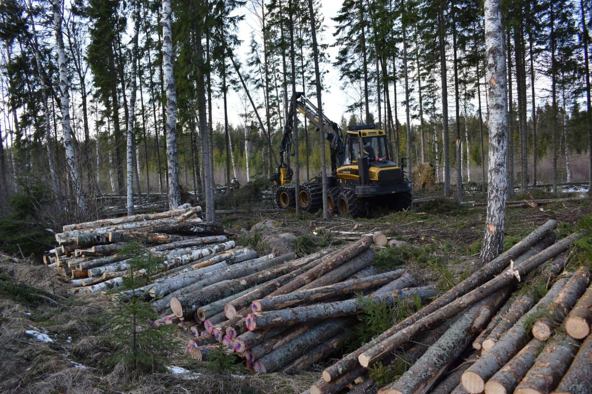 metsäkone Ahvenanmaalla, Lemland