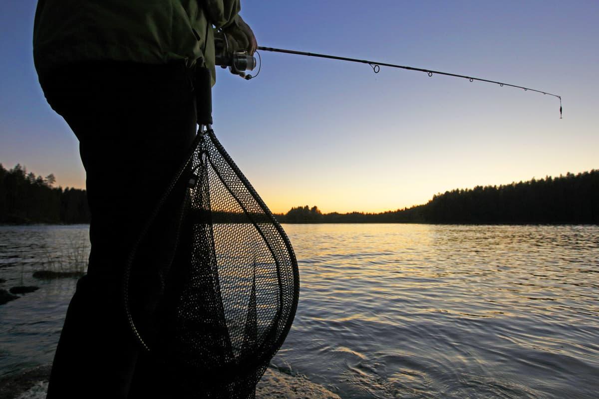 Viehekalastaja kalastaa.