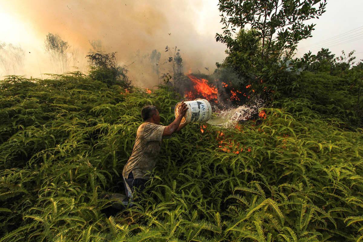 Kuvassa mies yrittää sammuttaa metsäpaloa.