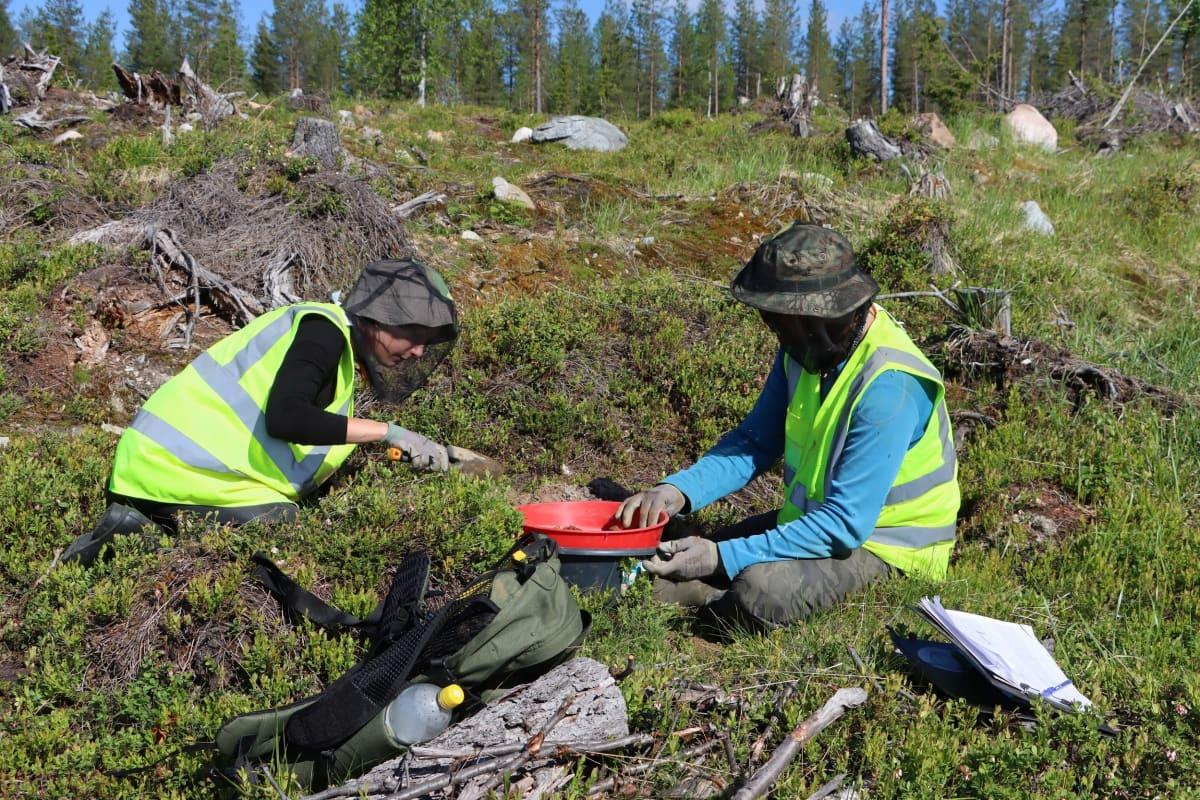 Maaperästä näytteitä ottavat Katariina Riihimäki ja Petri Lahermaa.