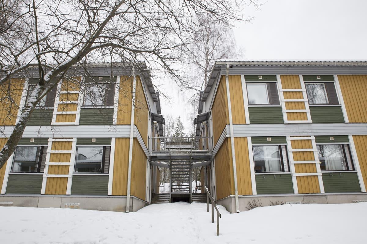 Hoasin purettavia opiskelija-asuntoja Kulorastaantiellä Vantaalla.