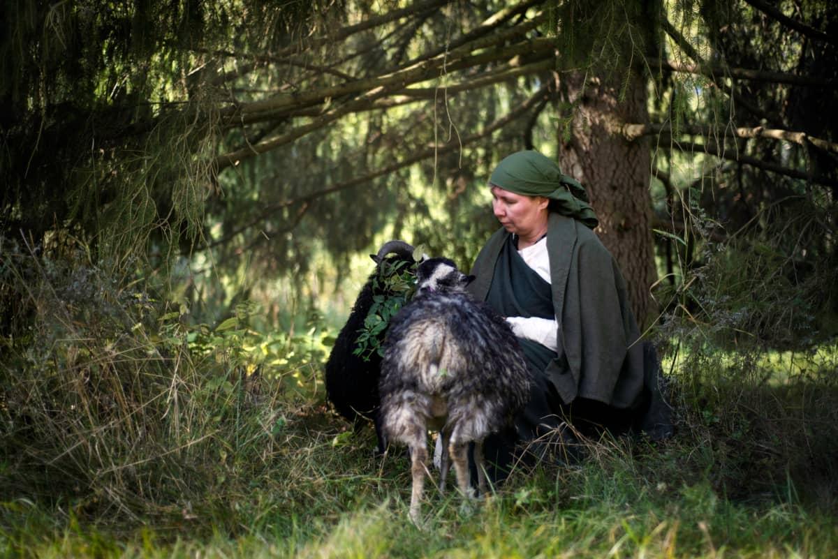 Lammastilan emäntä Hanna-Leena Juhola ahvenanmaanlampaineen.