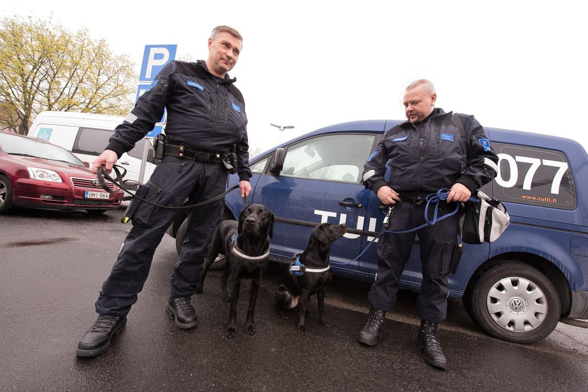 Raha- ja huumekoira Massi sekä ase- ja räjähdekoira Heila ohjaajineen kävivät Ylen aamu-tv:n vieraina torstaina 18. toukokuuta.