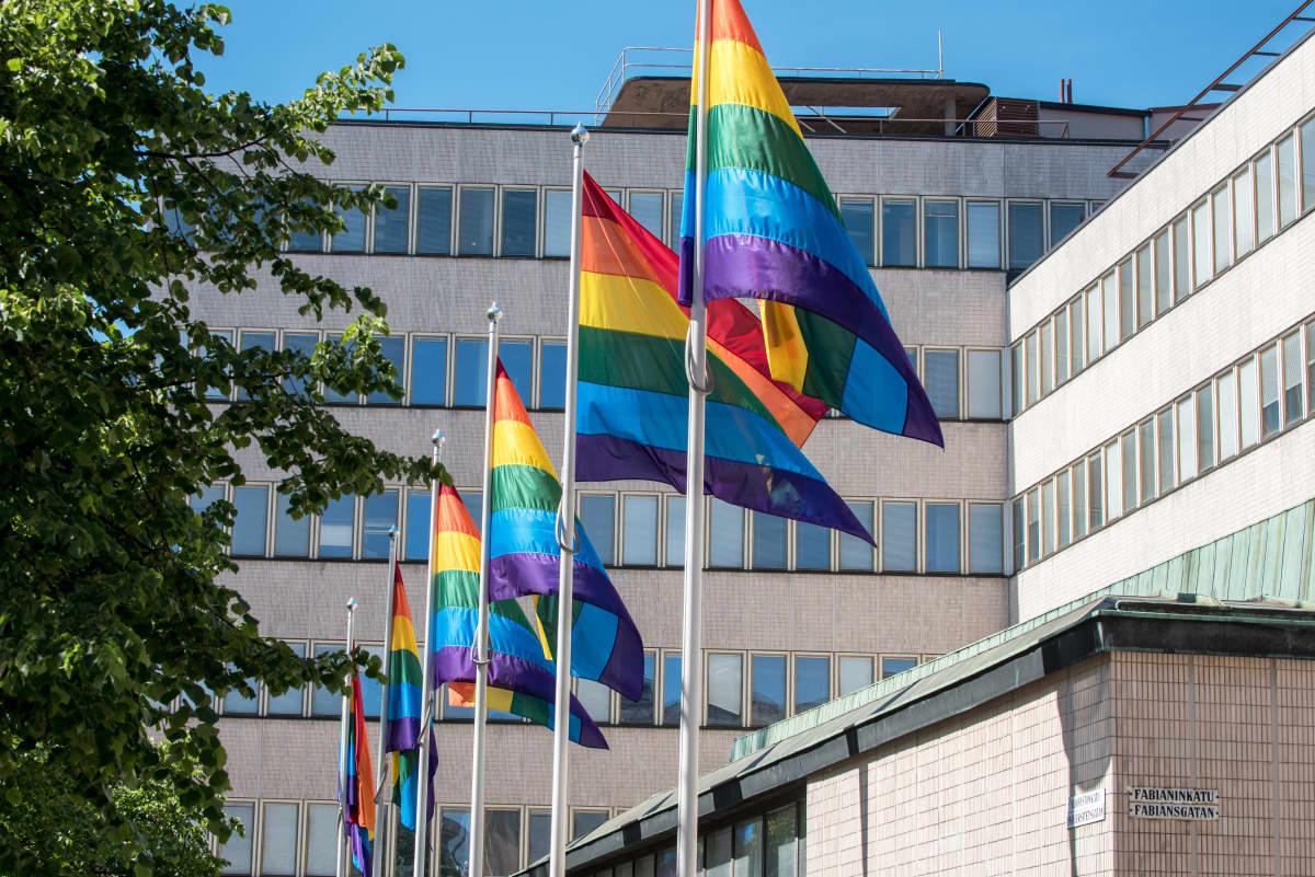 Helsinki Pride 2017 -viikon aikana pidettiin sateenkaarilippuja esillä yliopiston Porthanian rakennuksen edessä.
