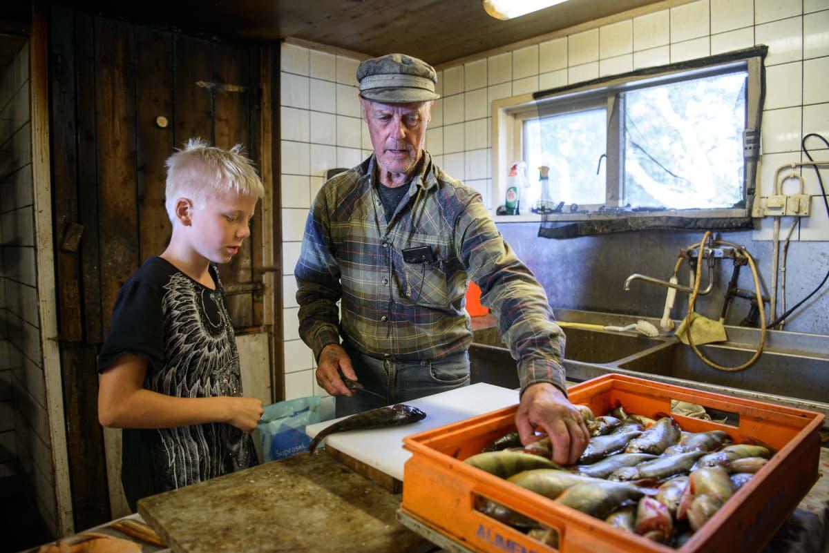 Vanha mies ja nuori poika katselevat ahvenia sisätiloissa