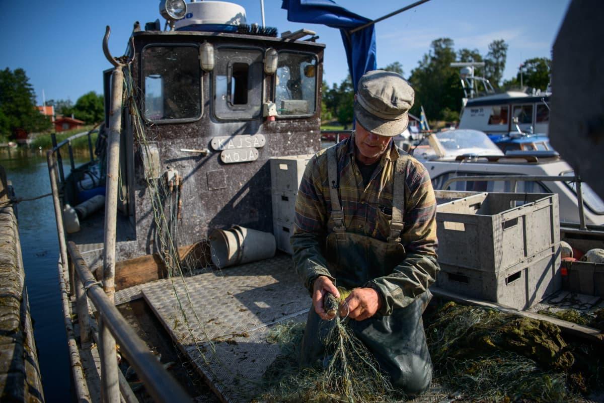 kalastaja selvittää verkkojaan veneessä