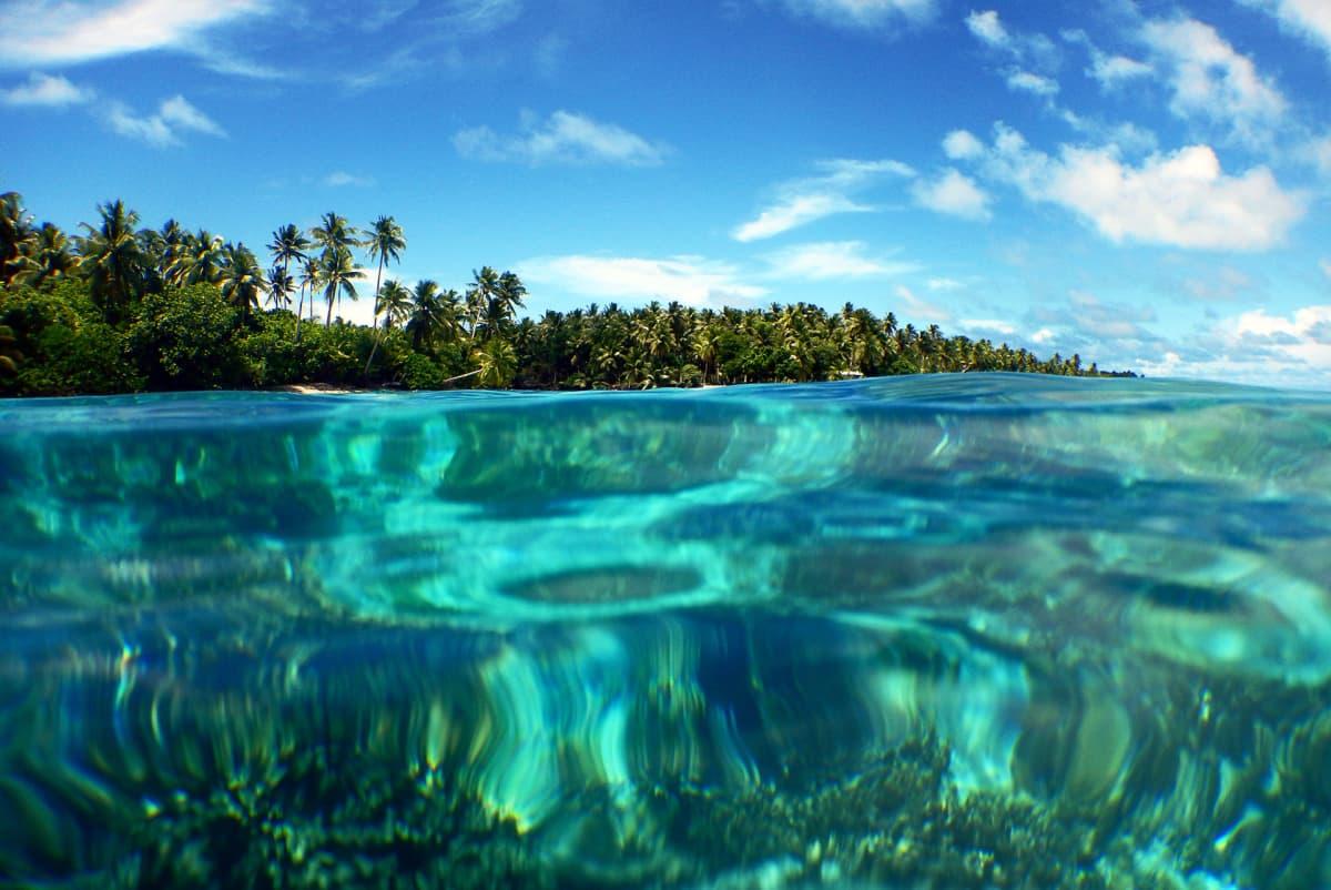 Saari veden pinnasta kuvattuna.