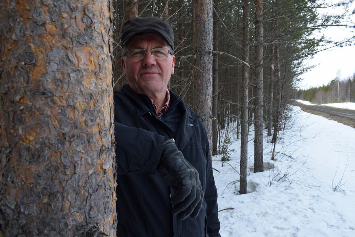 - Jos metsää harvennetaan 60-70 vuoden aikana pari-kolme kertaa, se ei ole tehometsätaloutta, sanoo MTK:n metsäasiantuntija Heikki Rahko.