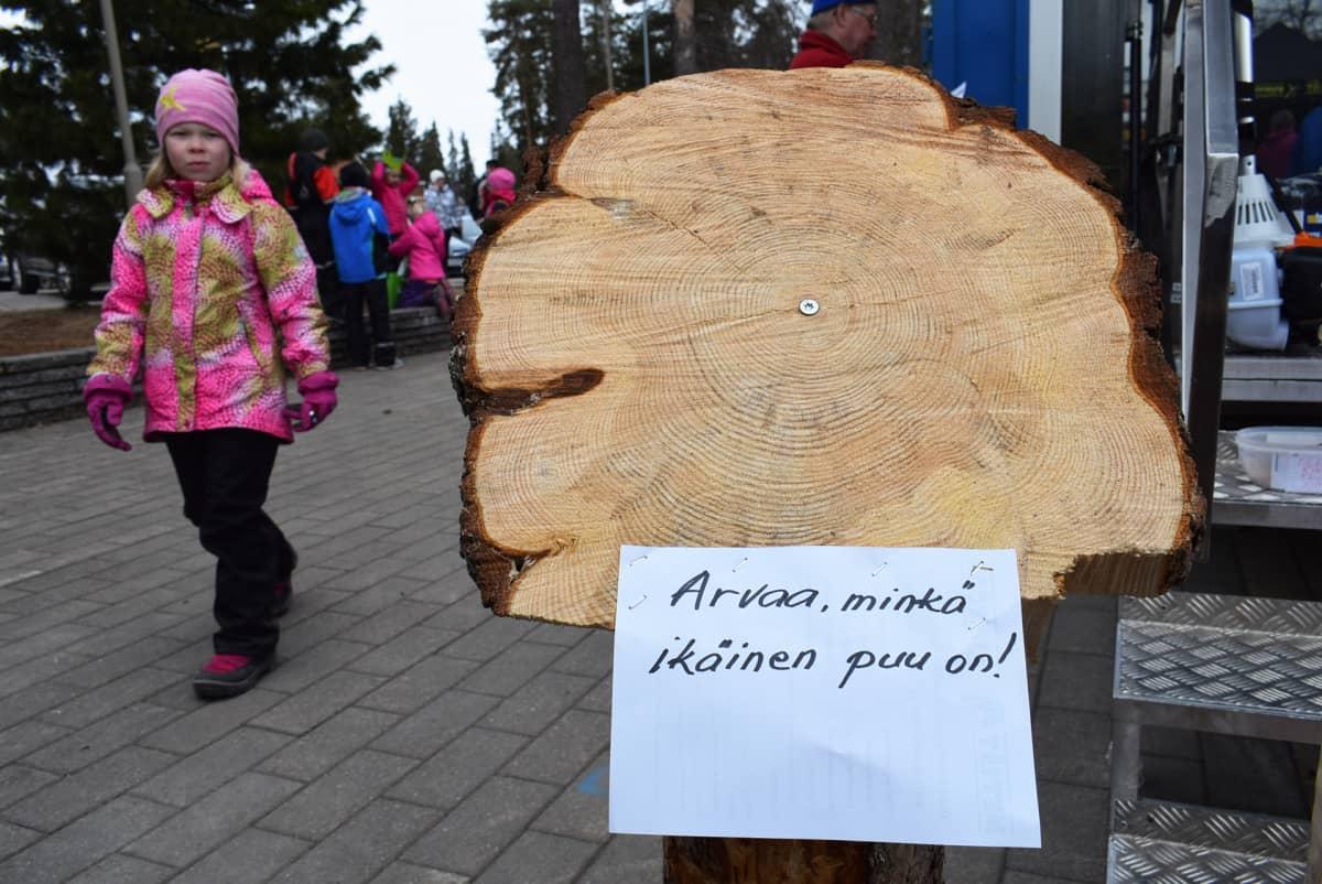 Metsäalan tapahtuma Ämmänsaaressa, Kainuussa.