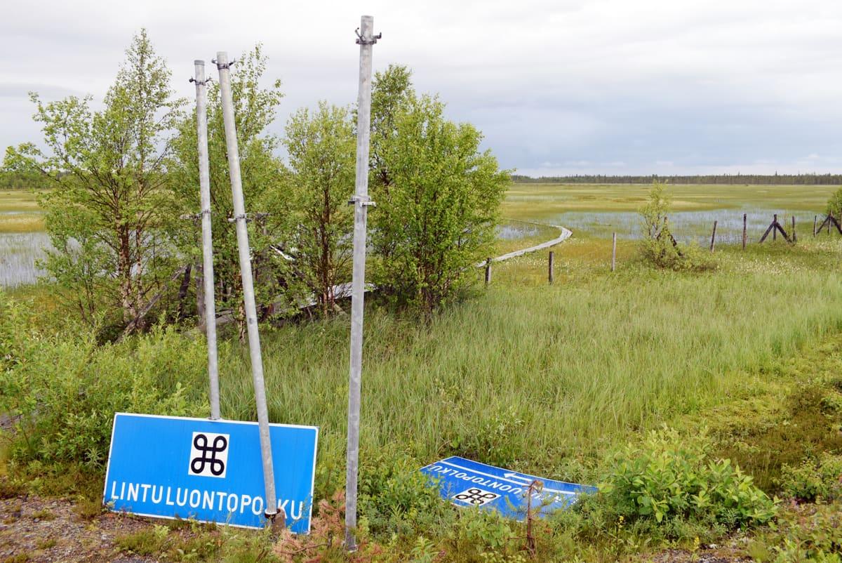 Luontopolku Sodankylässä.