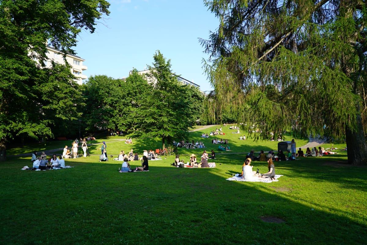Järjestyshäiriöt puistoissa Koff-puisto