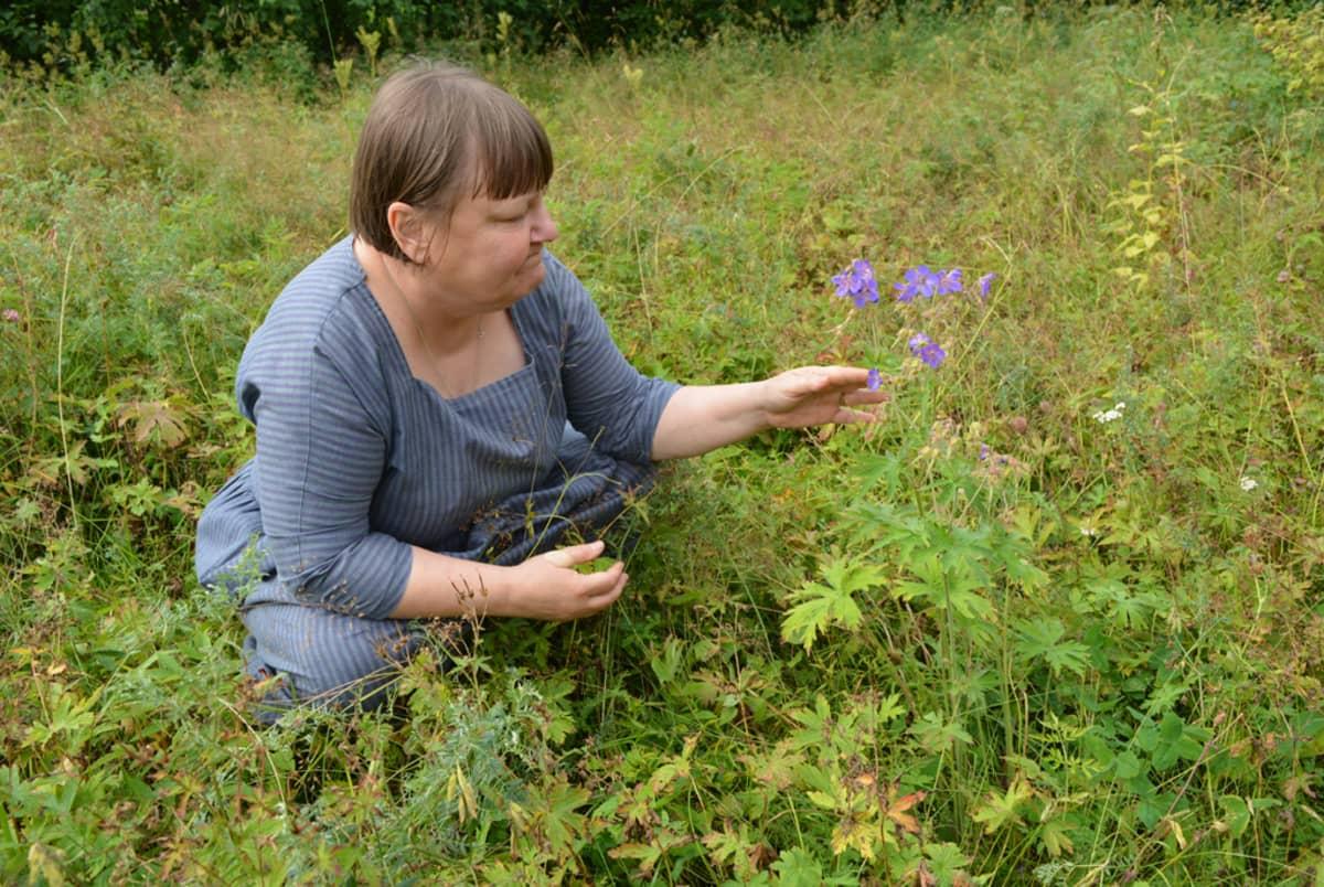 Riitta nykänen kyykyssä pihallaan tutkimassa kaukaa tullutta kasvia.