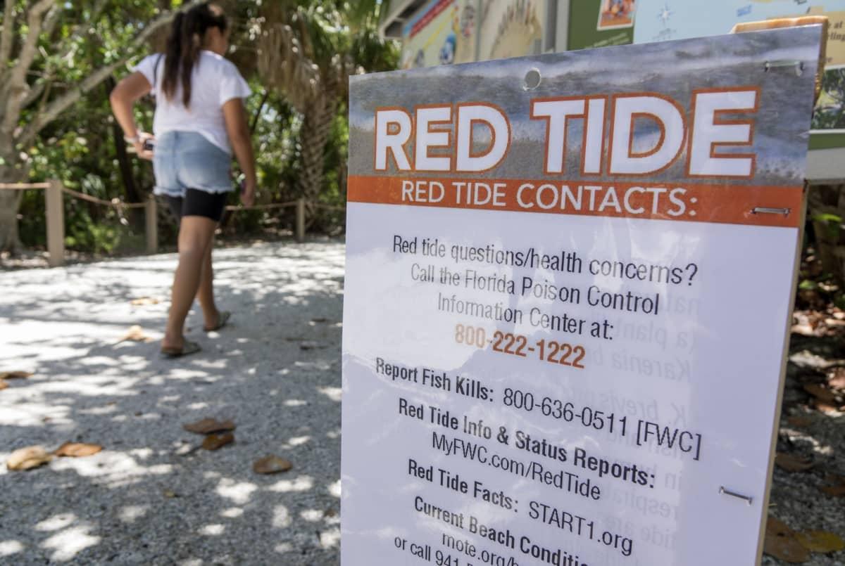 Yhteystiedot punaisen vuorovesi -ilmiön raportoimiseen.