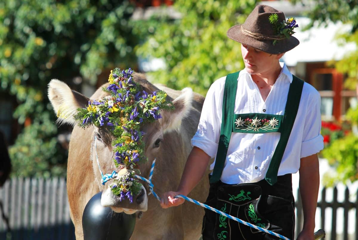 Saksalainen lehmipaimen elikoineen Pfrontenissa.