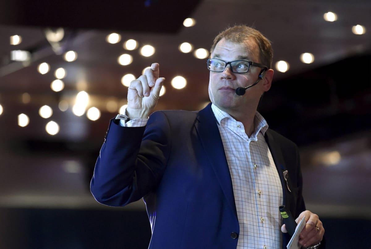 Pääministeri Juha Sipilä Keskustan Helsingistä Tallinnaan ja takaisin suuntautuvalla presidentti- ja maakuntaristeilyllä 15. lokakuuta