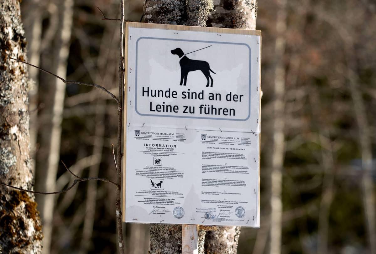 Kehoituskyltti koirien kiinni pitämiseen.