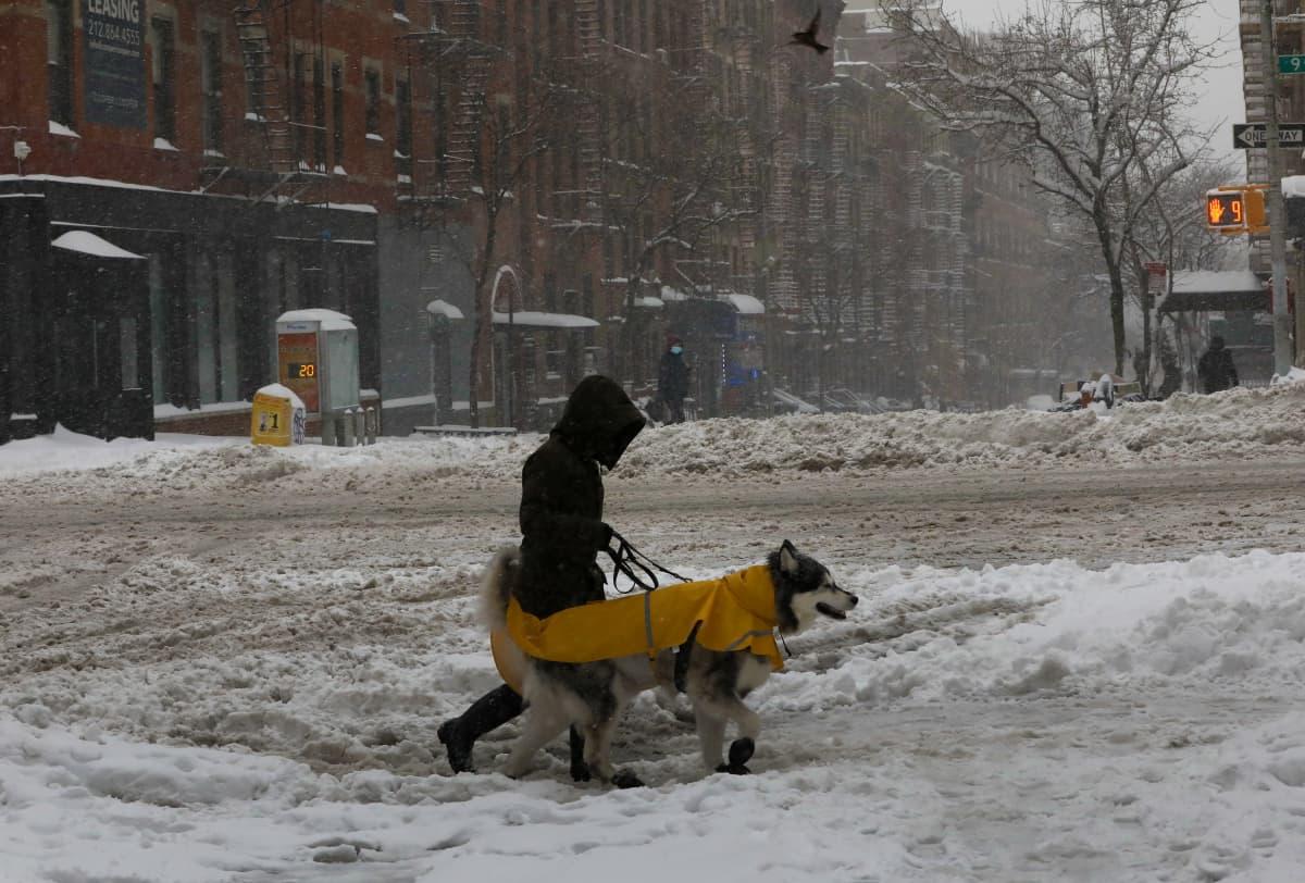 Lumimyrsky New Yorkissa Yhdysvalloissa 1.2.2021.
