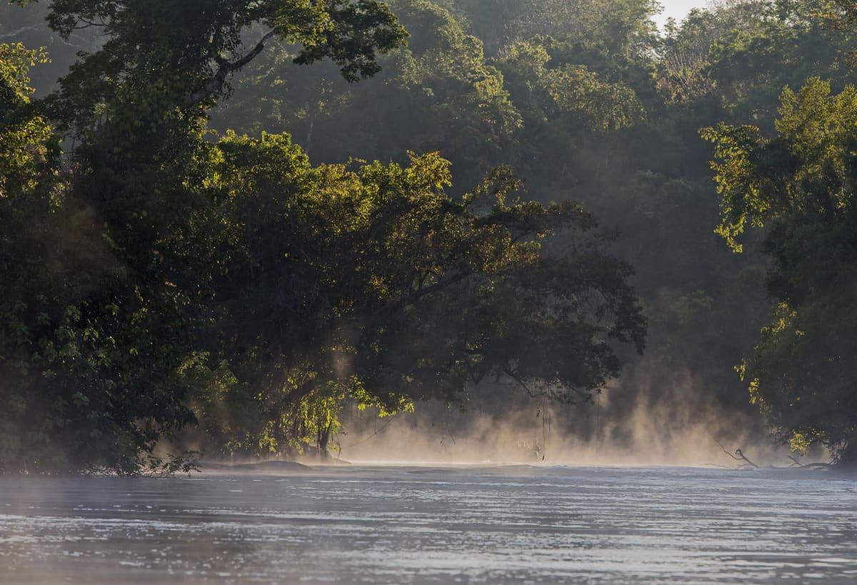 Cristalino-joella nousee utua vedenpinnasta. Sademetsää.
