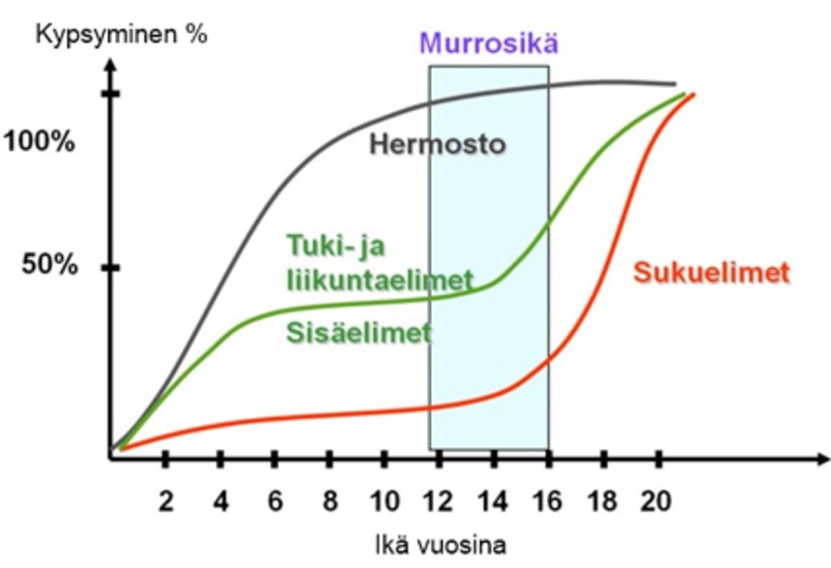 Antti Meron kuvaaja elinjärjestelmien kehittymisestä. Kuvaaja on alun perin esitelty jo 1930-luvulla.