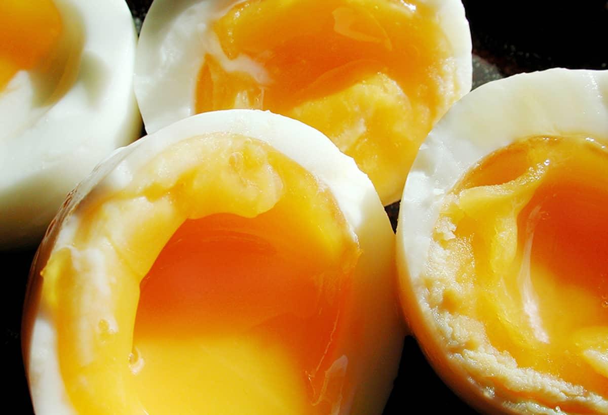 Kananmunia.