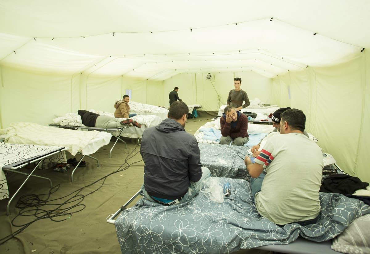 Turun vastaanottokeskus Pansiossa, telttamajoituksessa turvapaikanhakijoita.