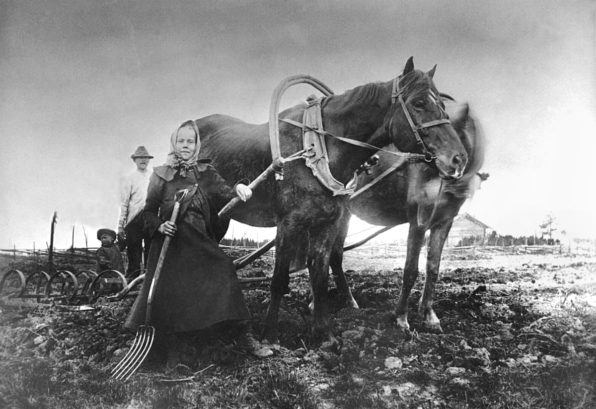 Nuori tyttö seisoo kahden hevosen kanssa pellolla, takana hänen isänsä ja nuorempi veli.
