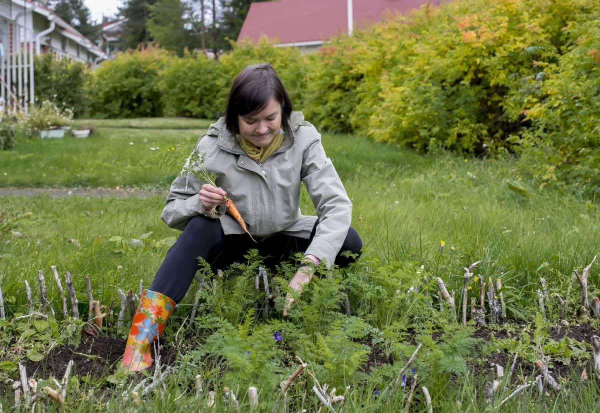 Mira Metsälehto hyötykasvipuutarhassaan porkkana kädessä.