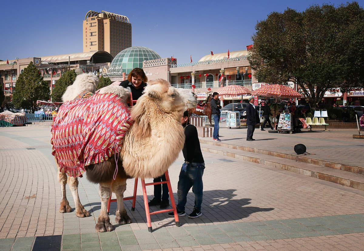 nainen kiipeää kamelin selkään aukiolla