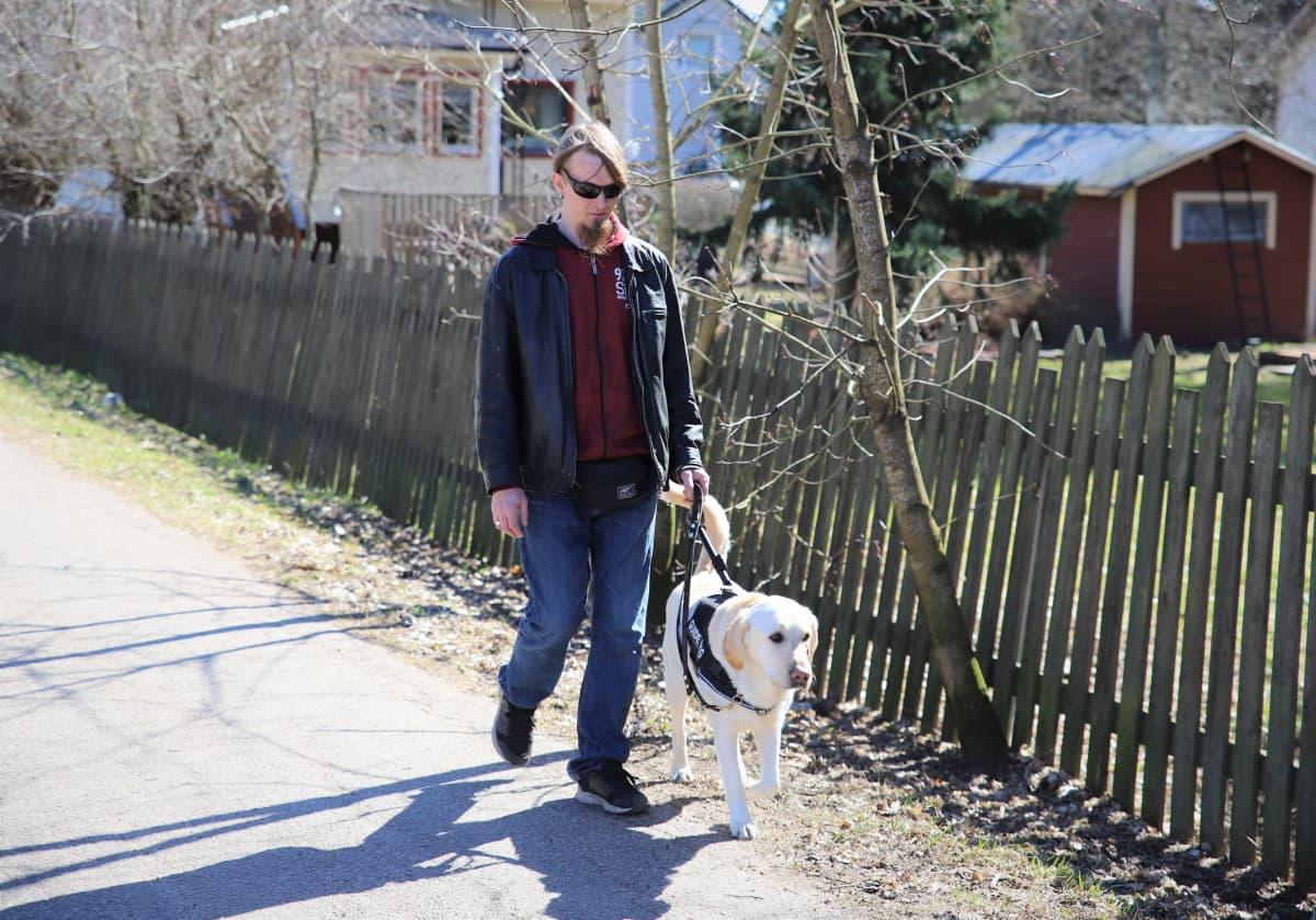 Jamppa Mikkola ja Nalli-opaskoira kävelevät kadulla.