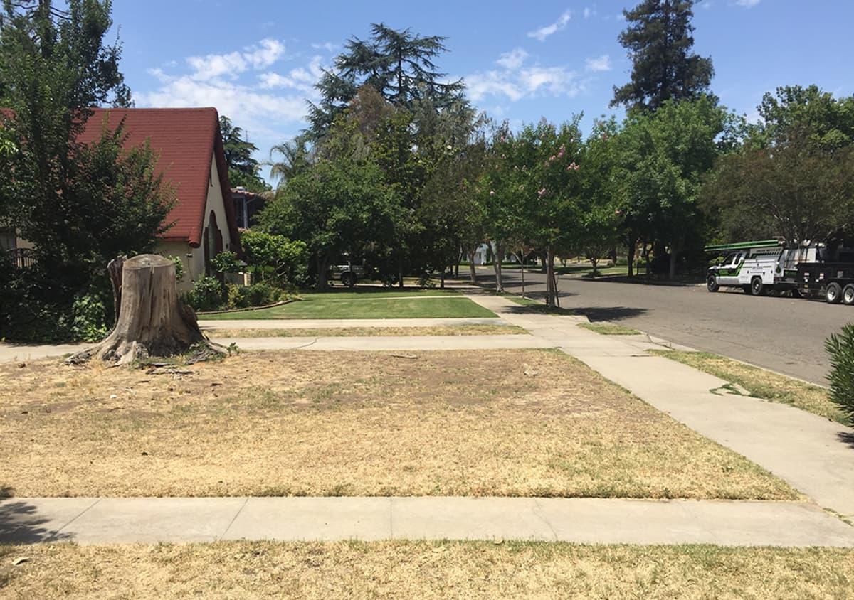 Kuivunut nurmikko lähiössä